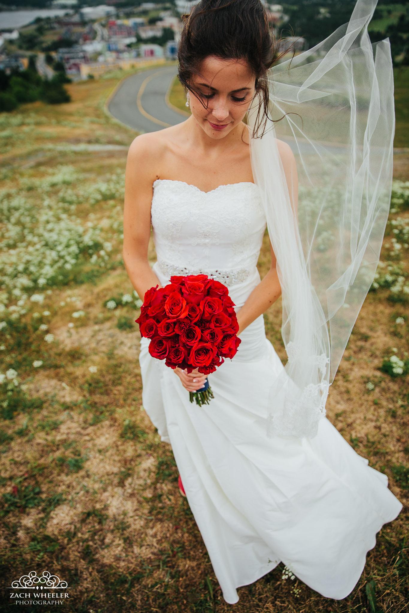 Laura-Benj-StJohns-Wedding-57