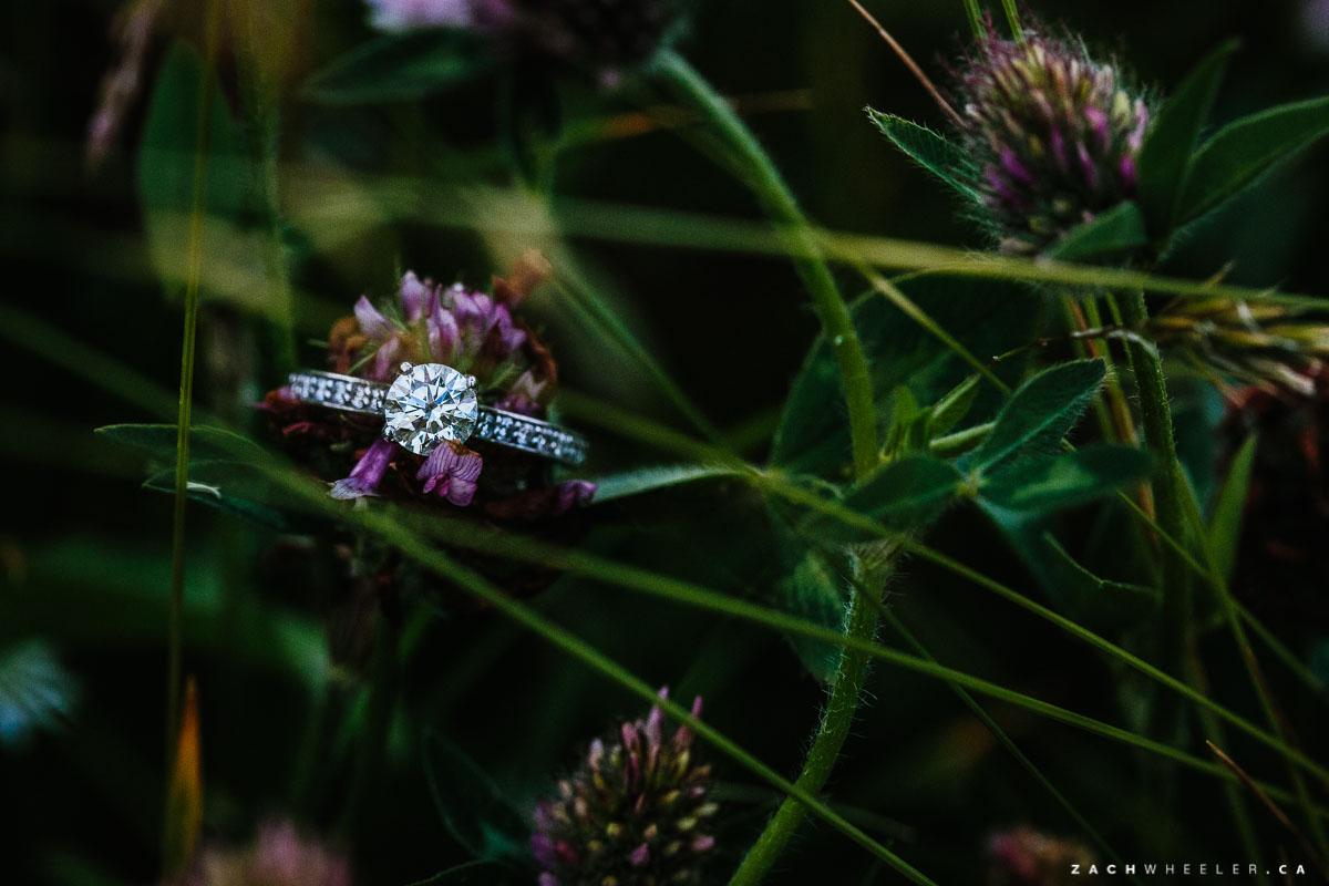 Jordan-Sandra-StJohns-Engagement-Blog-18
