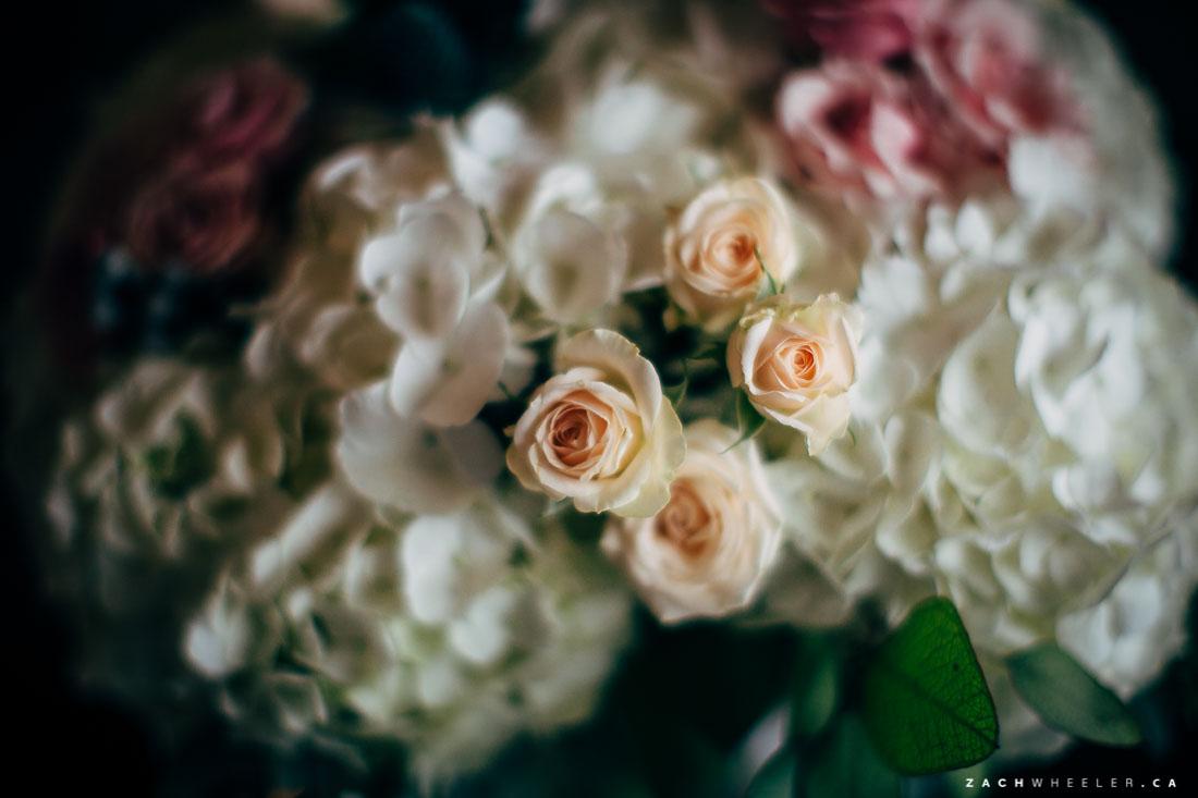 Jon-Ainsley-Pippy-Park-Wedding-Blog-52