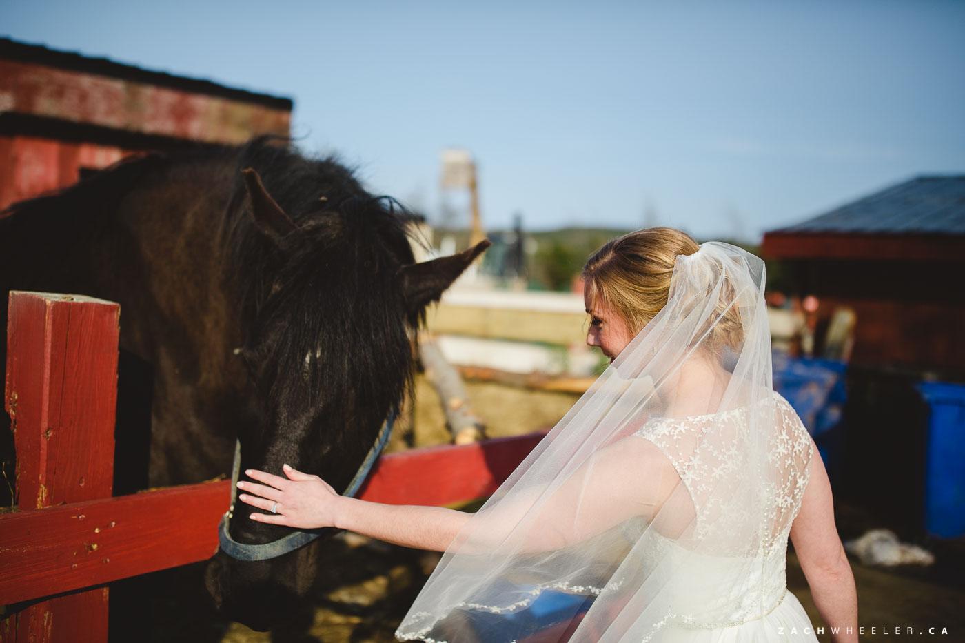 Sarah-Grant-Lesters-Fram-Wedding-71