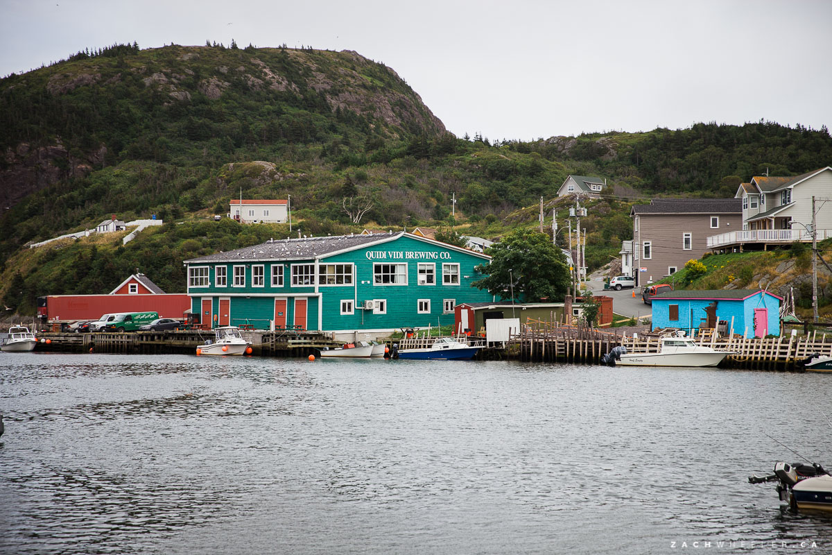 quidi-vidi-elopement-photos-1